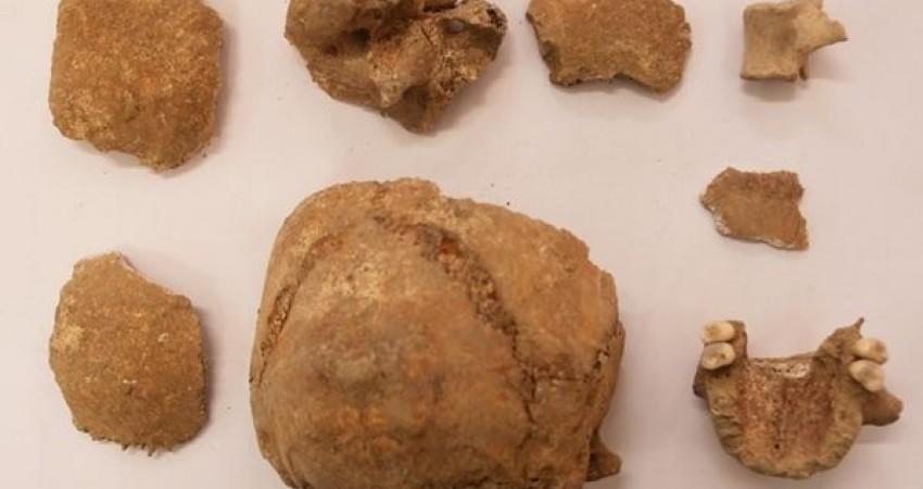 کشف شواهد جدید باستان شناختی از گذشته تاریخی تهران