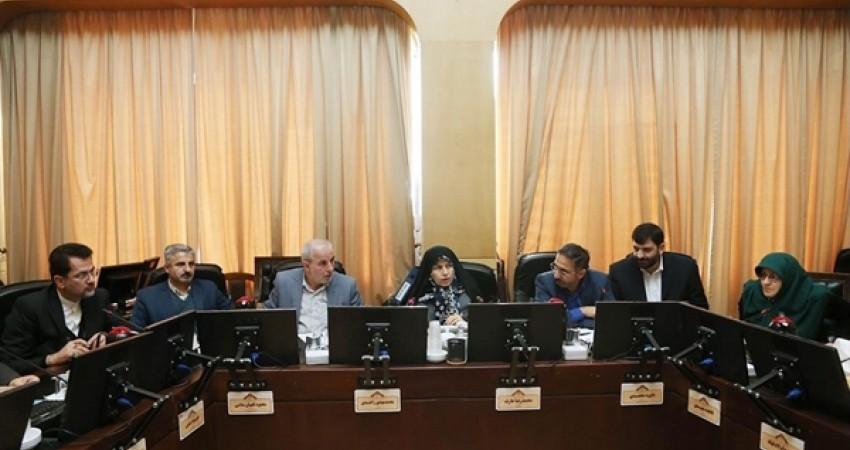 دیدار رئیس و معاونان سازمان میراث فرهنگی با اعضای فراکسیون گردشگری مجلس