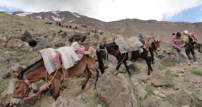 هشدار برای مهم ترین منطقه طبیعت گردی ایران