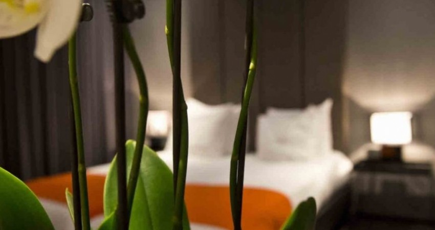 فرمول هتلداری سبز در ایران