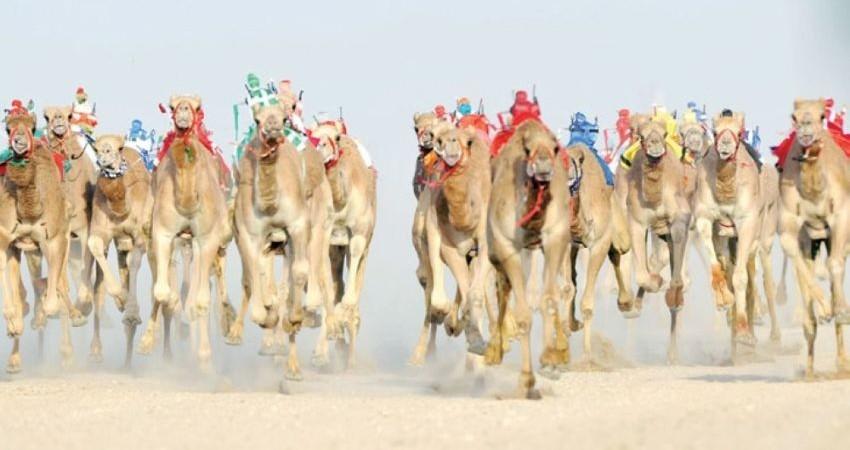 تلاش عربستان برای تبدیل شدن به مقصد گردشگری