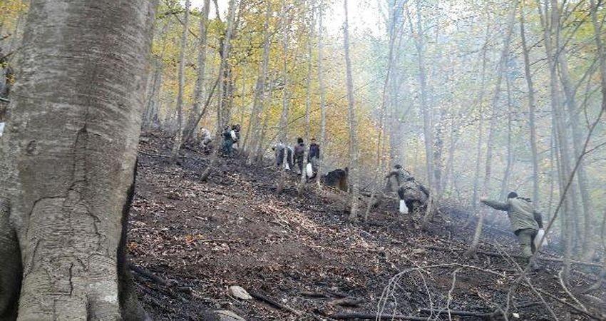 آتش 15 هکتار از جنگل های تنکابن را سوزاند