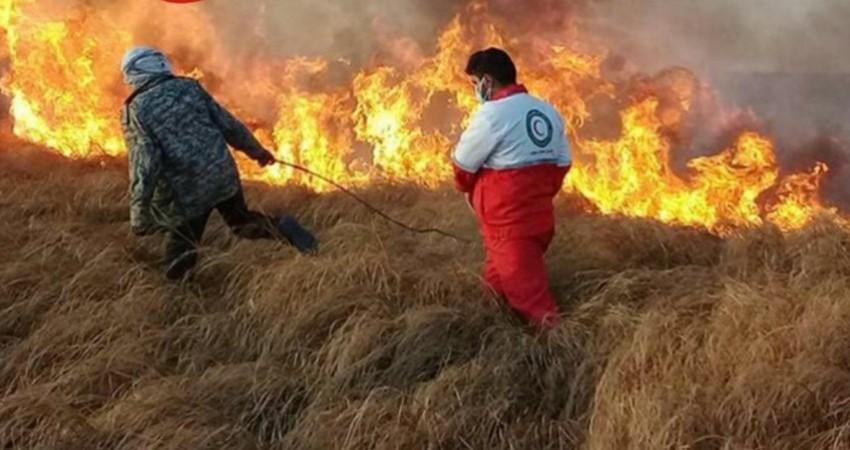60 هکتار از مراتع تالاب هامون در آتش سوخت
