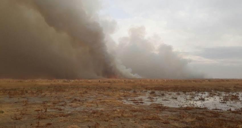 آتش سوزی تالاب میقان موجب افزایش پارامترهای آلودگی هوا در اراک شد