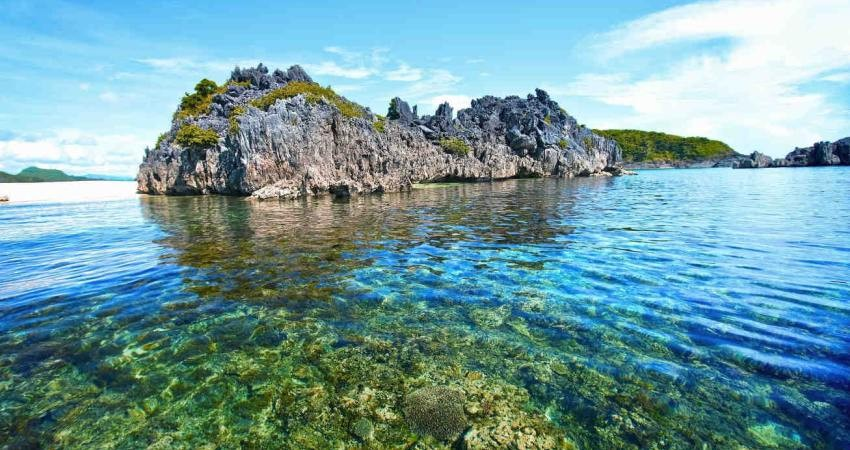 محیط زیست دریایی با انتقال آب بین حوضه ای مخالف است