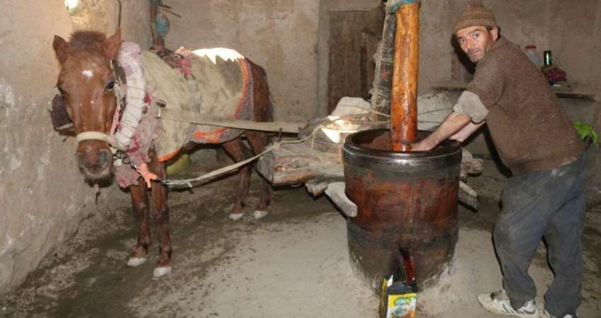 اسب عصاری جرگلان خراسان شمالی ثبت ملی شد