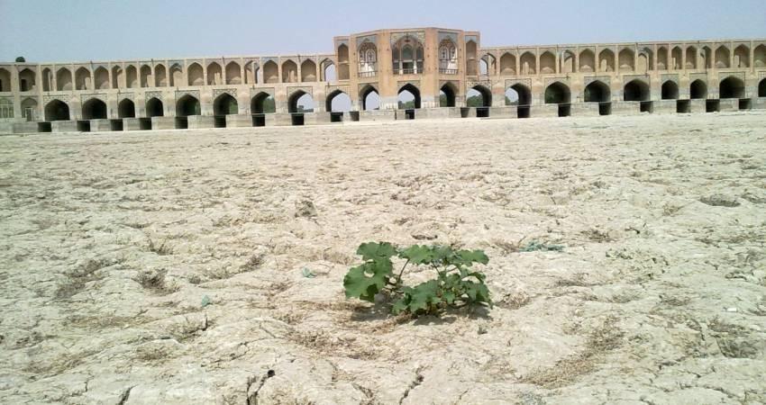 'آب' در ایران قربانی 'نان' شده است