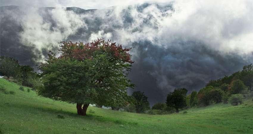 ضرورت ثبت جهانی مجموعه تاریخی بسطام و جنگل ابر شاهرود
