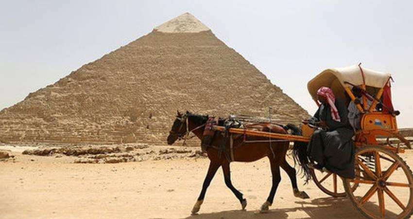 افزایش 77 درصدی گردشگران در مصر