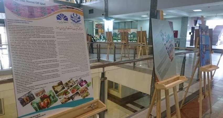 شورای عالی موزه های دانشگاهی تشکیل شد