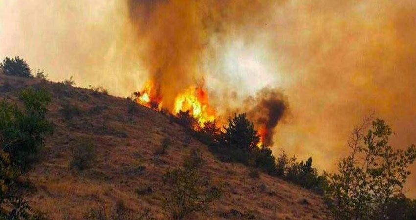آتش سوزی در جنگل ارسباران