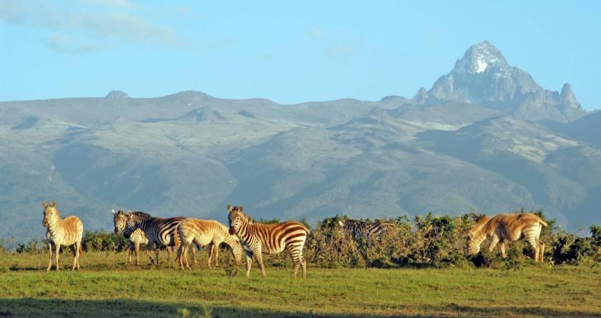 سیل در دروازه جهنمِ کنیا گردشگران را با خود برد