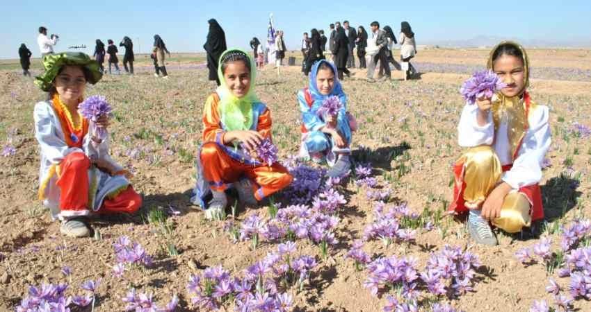 دومین جشنواره زعفران در طرق رود نطنز برگزار می شود