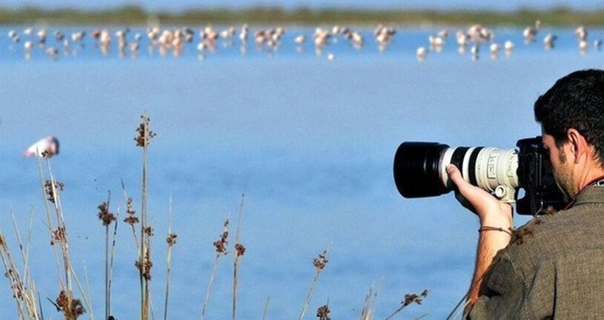 کارگاه آموزشی شناخت پرندگان تهران در روز ملی پرنده نگری