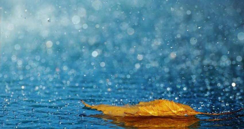 وقوع باران اسیدی به عنوان علت تنگی نفس منتفی است
