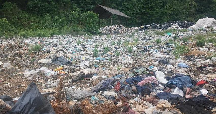 سازمان محیط زیست تبدیل به ارگانی تشریفاتی شده است
