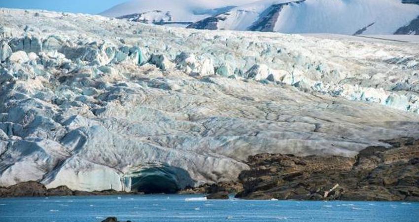 کشف بقایای جنگل 400 میلیون ساله در نروژ