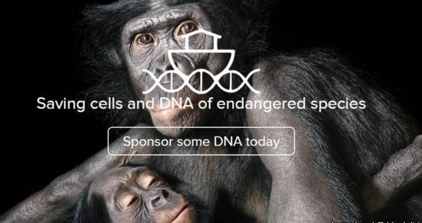 جمع آوری DNA جانوران در حال انقراض در «کشتی یخ زده»