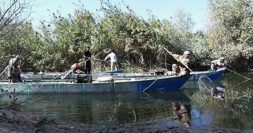 ماهیگیری برقی در آب های جنوبی کشور