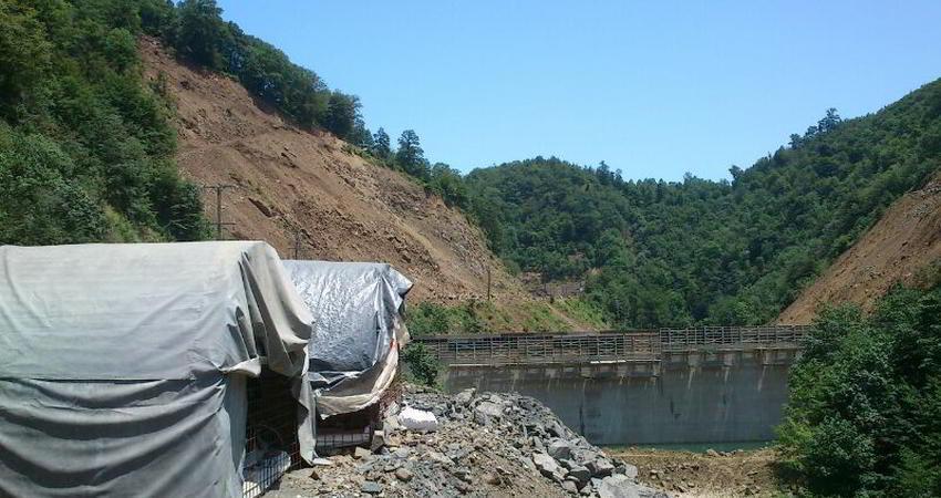 موافقت دولت با تخریب 43 هکتار از جنگل های هیرکانی