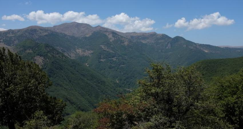 فرآیند ثبت جهانی جنگل های هیرکانی ادامه دارد