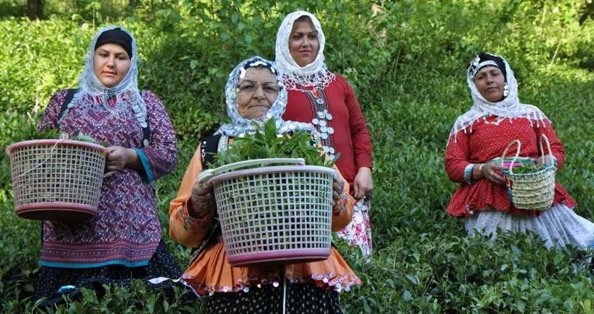 آغاز فاز اجرایی توسعه گردشگری اولین روستای هدف گردشگری در گیلان