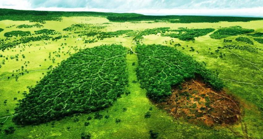 20 مسأله زیست محیطی ایران