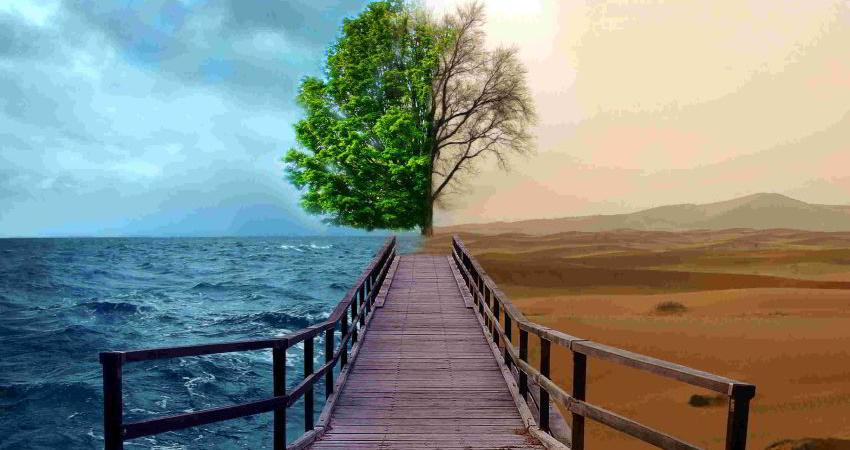 ساختار مدیریت محیط زیست، بایدها و نبایدها