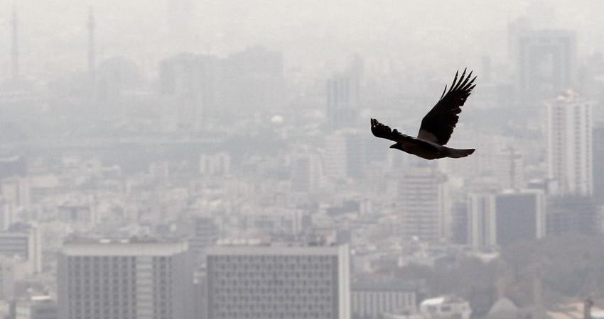 ایران دهمین کشور جهان در تولید گازهای گلخانه ای