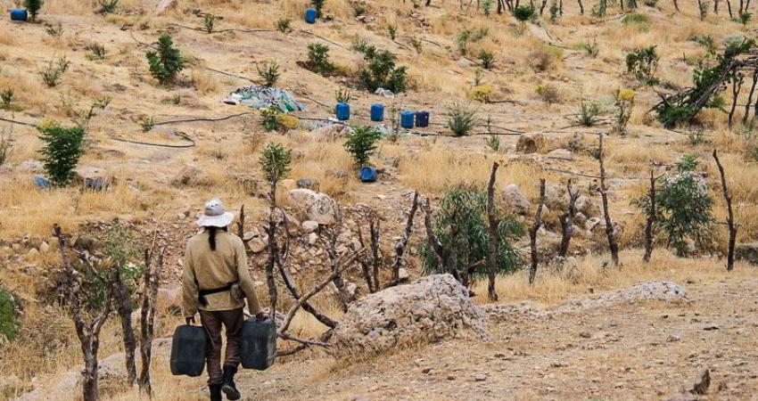ثبت 11 ذخیره گاه زیستگاهی ایران در یونسکو