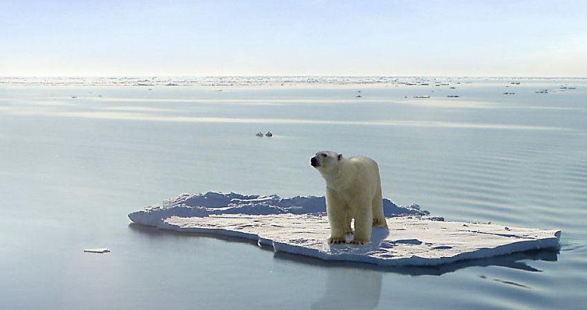 2015 گرم ترین سال جهان نام گرفت