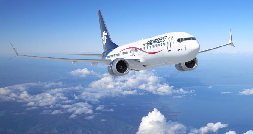 سوخت زیستی هواپیماهای آینده با ضایعات جنگلی